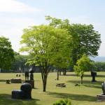 【写真】緑豊かな中央公園